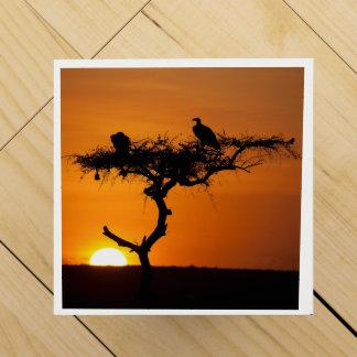 Lever de soleil au masai Mara, Kenya Boite Cadeau Pour Bouteille De Vin