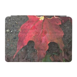Lever de soleil d'octobre protection iPad mini