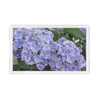 L'hortensia bleu fleurit le plateau de vanité