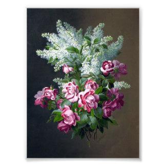 Lilas de rose et blancs pourpres vintages photographies d'art