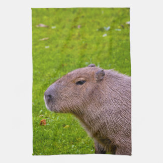 Linge De Cuisine Capybara animal extraordinaire