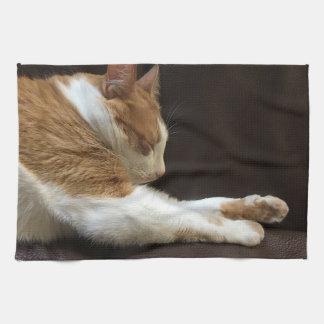 Linge De Cuisine Chat dormant sur le sofa