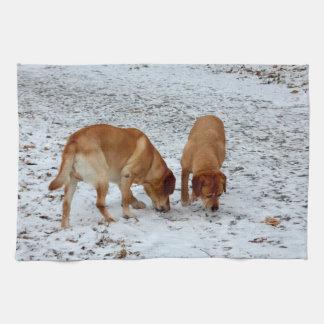 Linge De Cuisine Deux Labradors
