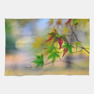 Linge De Cuisine l'abrégé sur nature de feuille d'arbre d'érable