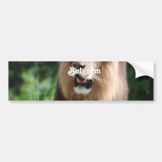Lion de la Belgique Adhésifs Pour Voiture
