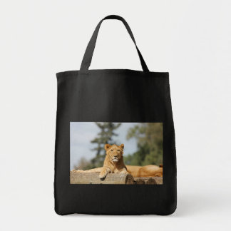 Lion femelle tote bag