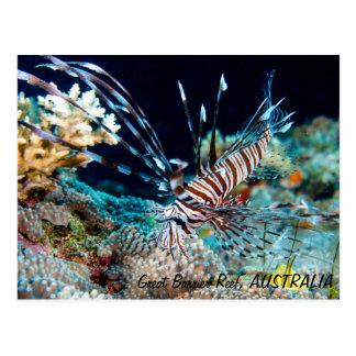 Lionfish sur la carte postale de la Grande