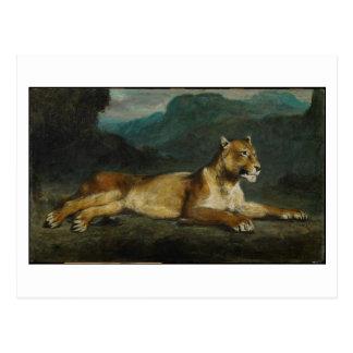 Lionne reposant, c.1855 (huile sur le panneau) carte postale