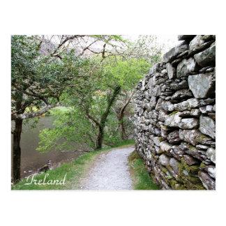 L'Irlande, liège du comté, mur en pierre, Carte Postale