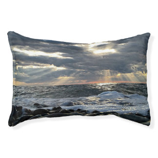 Lit Pour Animaux Rayons de soleil sur un rivage rocheux