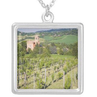 L'Italie, Bologna, vue par le vignoble à Chiesa Collier