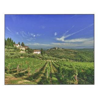 L'Italie, Toscane, Greve. Les vignobles de
