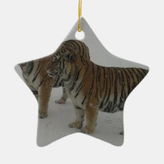 Locations deux tigres sibériens ornement étoile en céramique