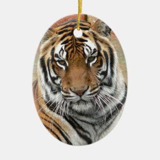 Locations Tigres dans la contemplation Ornement Ovale En Céramique