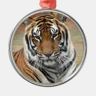 Locations Tigres dans la contemplation Ornement Rond Argenté