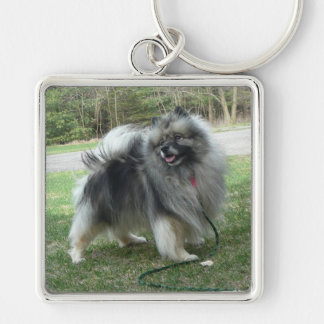 """Lola """"porte - clé de carré du Keeshond parfait"""" Porte-clés"""