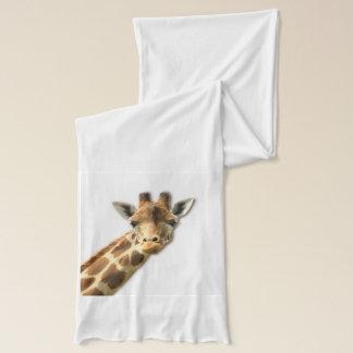 Longue girafe étranglée écharpe