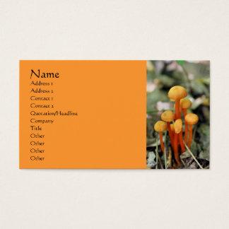 L'orange répand carte de visite de photographie de