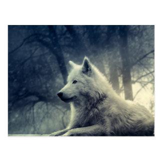 Loup arctique noir et blanc cartes postales