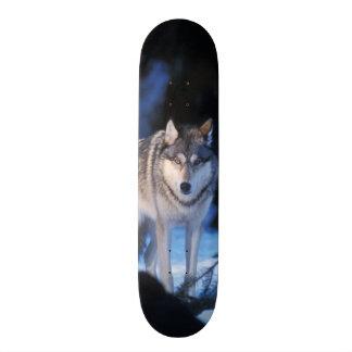 loup gris, lupus de Canis, dans les collines des 3 Plateau De Skateboard