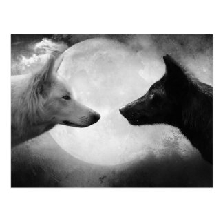 Loups Carte Postale
