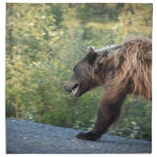 L'ours gris le Yukon, Canada attaque, des Serviettes En Tissus