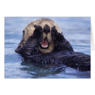Loutre de mer mignonne | Alaska, Etats-Unis Carte De Vœux