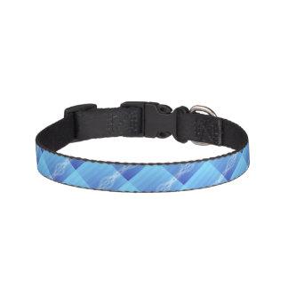 Lumières bleues collier pour chien