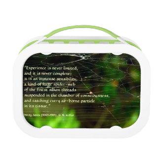 Lunch Box EXPÉRIENCE de complexité