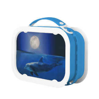 Lunch Box Gamelle enchanteresse de dauphin et de lune