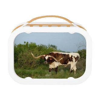 Lunch Box Panier-repas du Texas Longhorn