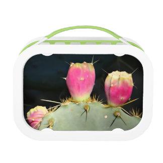 Lunchbox van de Cactus van Yubo door SnapDaddy