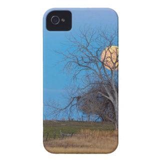 Lune méga de castor coque iPhone 4