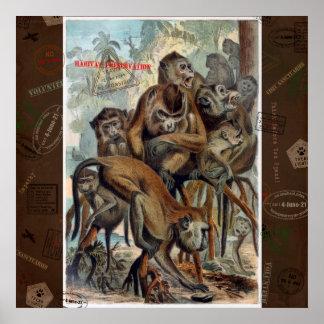 Macaques pour le voyage responsable poster