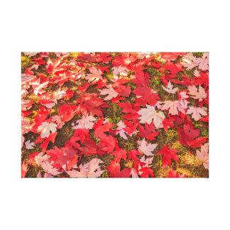 magie chromatique de l'automne sur la toile