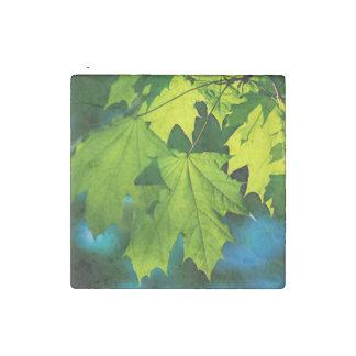 Magnet En Pierre Feuille vert frais d'érable