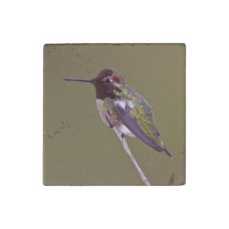 Magnet En Pierre Repos de colibri