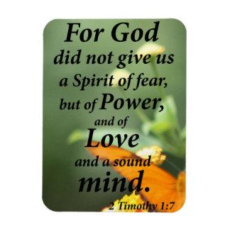 Magnet Flexible 2 1:7 de Timothy
