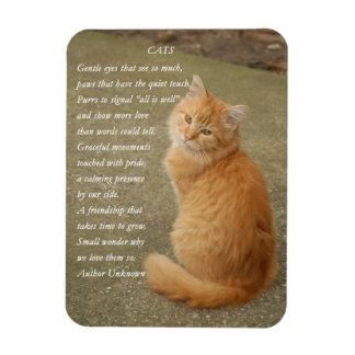 Magnet Flexible Aimant orange mignon de poème de chat de photo de