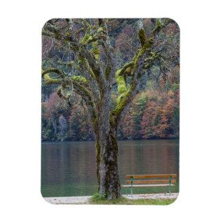 Magnet Flexible Banc tranquille le long d'un lac, Allemagne