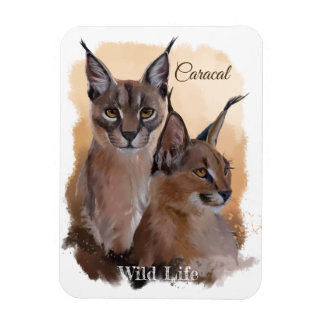 Magnet Flexible Caracal