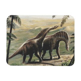 Magnet Flexible Dinosaures vintages, Amargasaurus avec des