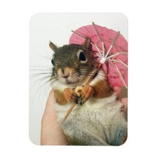 Magnet Flexible Écureuil avec un aimant de parapluie