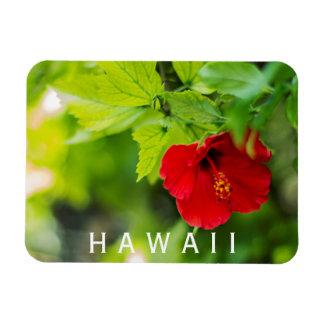 Magnet Flexible Fleur tropicale de ketmie rouge de Hanalei