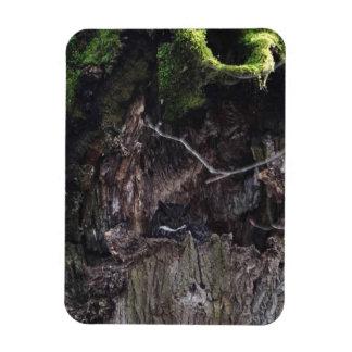 Magnet Flexible Grand hibou à cornes dormant dans l'arbre