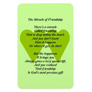 Magnet Flexible Le miracle de l'aimant d'amitié