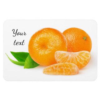 Magnet Flexible Mandarines