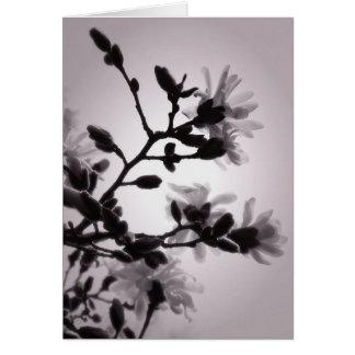 Magnolia inspirée asiatique carte