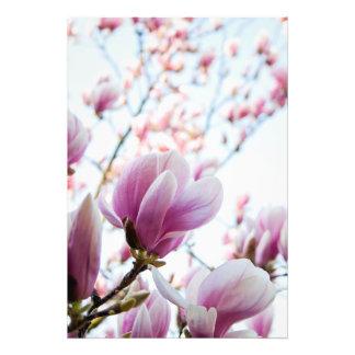 Magnolia Tirages Photo