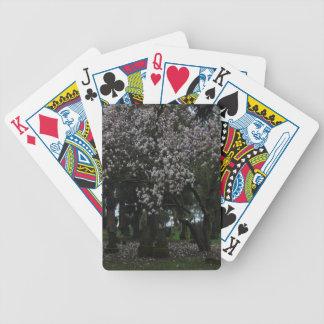 Magnolias pour toujours jeux de cartes